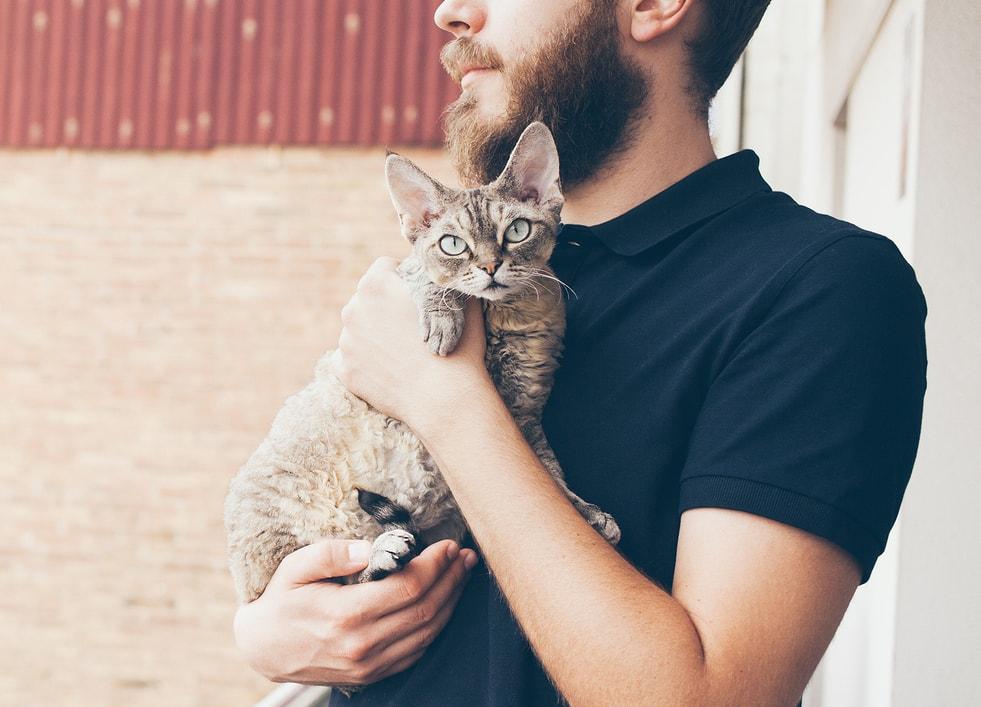 穿着黑马球衫的男人抱着一只猫铲屎官们都好奇?如何正确抱猫?